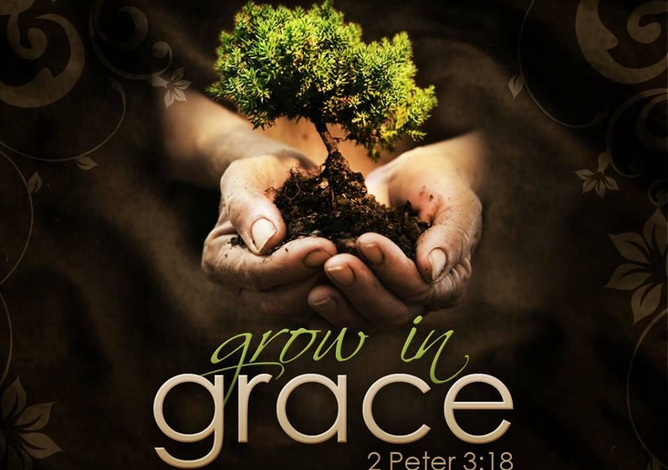 Growing In Grace (Quiet-Time Review)